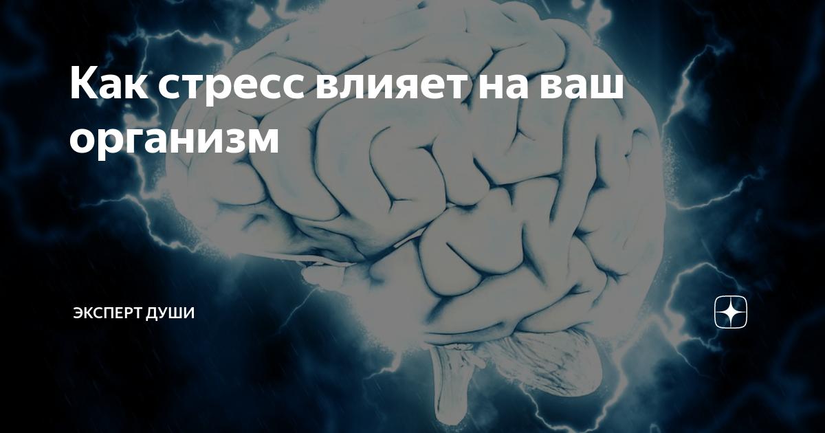 Как стресс влияет на ваш организм   Эксперт души 8