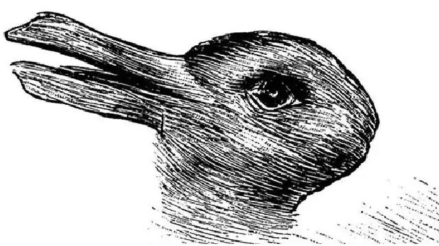 Кролик или утка?