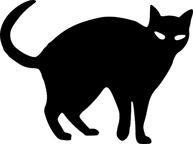 Изображение: https://pixabay.com/vectors/halloween-cat-black-spooky-angry-151310/
